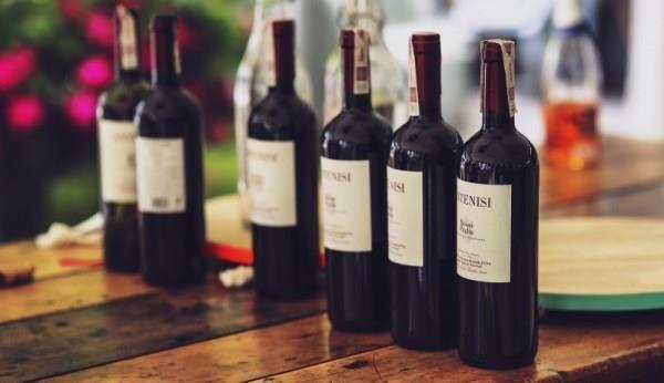 Производство вина, как бизнес